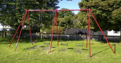Tree surgery on Playground, 31st Jan
