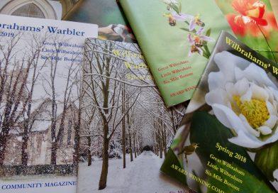 Wilbrahams' Warbler Summer edition on line