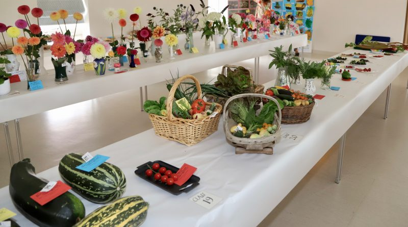 The Doorstep Vegetable, Flower and Produce Show