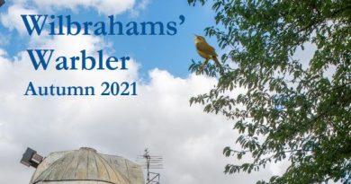 Wilbrahams' Warbler Autumn 2021