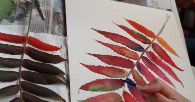 Well-brahams watercolour workshop